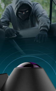 Waylens Secure 360 break in thief into vehicle